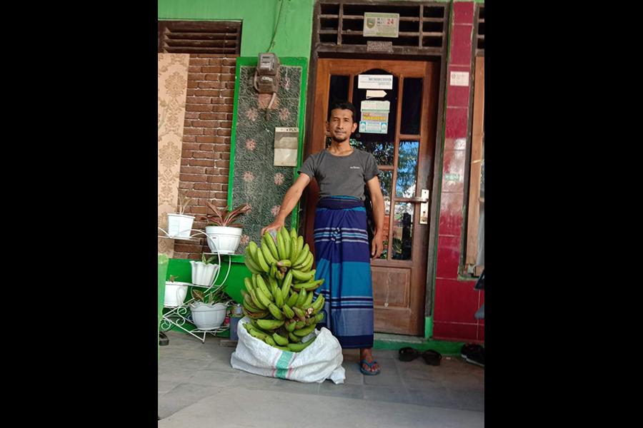 Tak disangka, ada seseorang mengantarkan rizki berupa pisang satu tandan besar ke rumah Ustadz Badrusalim.