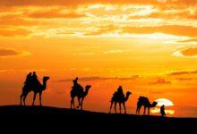 Rasulullah Hijrah: Perjalanan ke Madinah (Bagian 6)