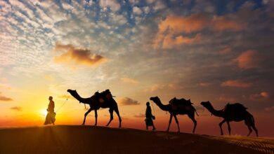 Rasulullah Hijrah: Kejadian saat Perjalanan ke Madinah (Bagian 7)